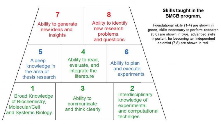 BMCB Skills Chart